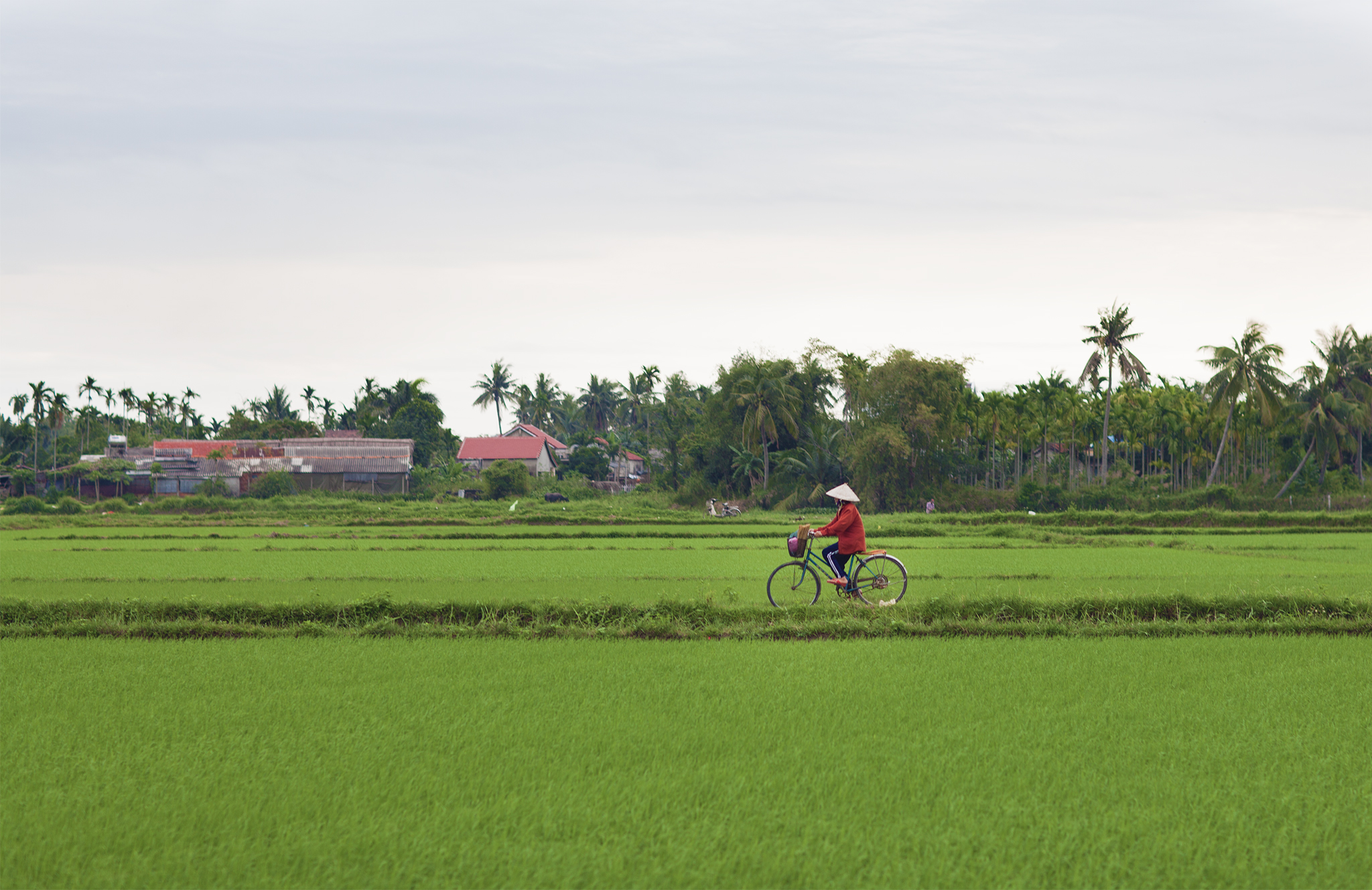 VIETNAM 101 - A quick guide to the Vietnam I fell in love with - Behind The Quest